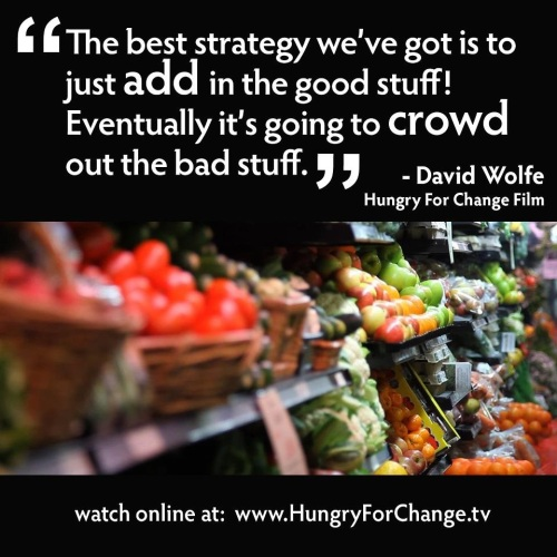 hungry for change image 1